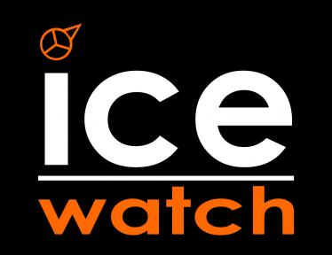 Франшиза Ice-Watch. Информация, цена, отзывы